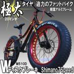 ファットバイクTRINX-M510 迫力の極太タイヤパターン 20インチ迫力タイヤ 前後ディスクブレーキ装着 3Dデザイン軽量アルミ フレーム