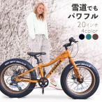 ファットバイク 20インチ 極太タイヤ シマノ 7段変速 Wディスクブレーキ 自転車本体 街乗り 雪道 海岸 TRINX T100