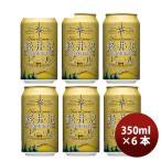 父の日 プレゼント ギフト クラフトビール 地ビール THE 軽井沢ビール 浅間名水 ダーク 350ml 6本 ☆ beer