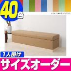 ベンチ 収納ベンチ  ベンチソファー収納 アゴラ-450(レザータイプ)長椅子 1人掛け