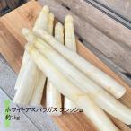 ホワイト アスパラガス フレッシュ 約1kg(フランスまたはイタリア産)