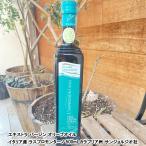 エキストラバージンオリーブオイル イタリア産 ラスプロモンターノ 500ml カラブリア州 サンジョルジオ社