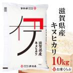 新米 送料無料 令和元年産 滋賀県産キヌヒカリ 10kg  御中元  熨斗承ります