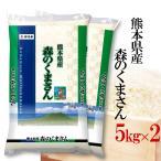 お米 10kg 白米 送料無料 令和2年産 熊本県産 森のくまさん 10kg(5kg×2袋) お中元 熨斗承ります