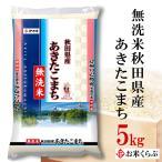新米 5kg 送料無料 白米 令和元年産 無洗米 秋田県産 あきたこまち  熨斗承ります