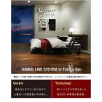 【開梱設置送料無料】フランスベッド 電動ベッド セミ