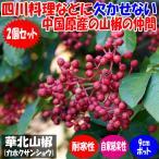華北山椒(カホクサンショウ)9cmポット苗(挿し木苗)/お買い得2個セット 四川料理などに欠かせない中国原産の山椒の仲間。四川山椒とも呼ばれます。【果樹 1年生