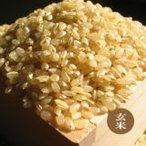 令和元年産棚田の魚沼コシヒカリ 玄米 20kg  幻の米 新米 農家直送 棚田米 通販 関東送料無料