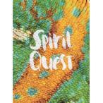 Spirit Quest 【NYC】【コリンリード】【映像作品】【スケートボード】【スケボー】【SKATEBOARD】