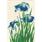 F003 花菖蒲 花版画 Flower Woodcut ‐Iris‐