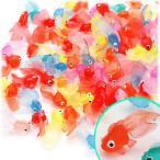 金魚-商品画像
