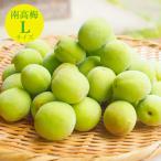 伊藤農園の南高梅 梅 和歌山県産(青梅)3kg 2箱〜送料無料、3箱で1kgおまけ。