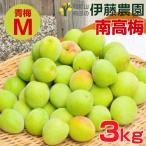 伊藤農園の南高梅 梅 和歌山県産(青梅Mサイズ)3kg「特別価格」2箱〜送料無料、3箱で1kgおまけ。