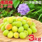 伊藤農園の南高梅 梅 和歌山県産(青梅SS~Sサイズ)3kg「特別価格」2箱〜送料無料、3箱で1kgおまけ。