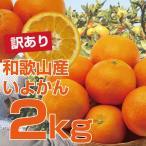 柑橘 - 「訳あり」和歌山産・伊予柑(いよかん) 2.5kg 2箱〜送料無料、3箱で1箱おまけ