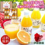 遅れてごめんね 母の日 ギフト 無添加 100% みかんジュース オレンジジュース 180ml 8本 花 カーネーション セット 送料無料 伊藤農園 みかんしぼり