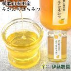 暑中見舞い 敬老の日 ギフト  純粋 はちみつ 国産 みかん 蜂蜜 450g 大容量 お中元