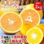 2箱購入で送料無料 フルーツ 詰め合わせ  かんきつ類 訳あり 2kg みかん以外和歌山 自宅用 柑橘類 旬