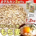 スーパー もち麦 1.2kg【300g×4個】