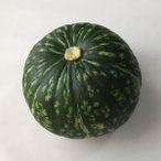 かぼちゃ 17cm前後1個 福岡産