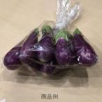 ミニナス(フェアリー・テイル)1袋 福岡産