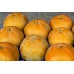 太秋柿(たいしゅうがき)2個 福岡産r