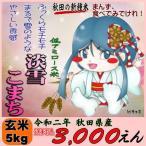 令和元年 秋田県産 淡雪こまち(低アミロース米) 玄米 5kg