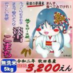 令和2年 秋田県産 淡雪こまち(低アミロース米) 無洗米 5kg