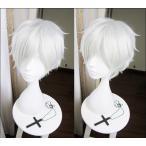 ウィッグ 赤髪の白雪姫 ゼン・ウィスタリア・クラリネス cosplay コスプレ la003yqy2w5