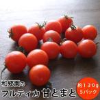 『フルティカトマト』 5パック (1パック 約140g)  千葉県産  *常温便