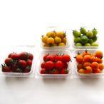 全色糖度8度超 ネクスファームの「カラフルITトマト」約500g 岩手花巻産(1パック約100g×5パック)減農薬栽培 *送料込 *代引き不可
