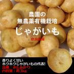 じゃがいも 無農薬有機栽培 きたあかり 約3kg 奈良県産