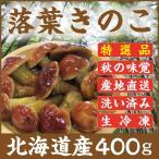 天然 落葉きのこ 400g 北海道産 生冷凍 らくようきのこ ハナイグチ