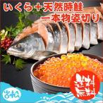 いくら 醤油漬け 北海道 200g 天然時鮭 一本物 姿切り 約2.3kg 送料無料 お取り寄せグルメ