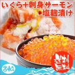 イクラ アラスカ産+刺身サーモン塩麹漬け  送料無料