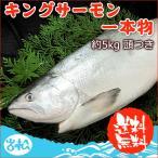 キングサーモン 豪華一本物 (頭付き) 約5kg 送料無料 お取り寄せグルメ