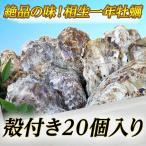 贝类 - 【牡蠣の王様】瀬戸内相生産殻付牡蠣20個入り【お取り寄せ】