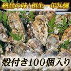 贝类 - 【牡蠣の王様】瀬戸内相生産殻付牡蠣100個入り【お取り寄せ】