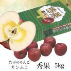 岩手のりんご サンふじ 秀果 約5kg C-11 数量限定