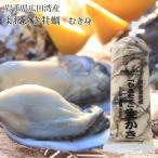 季節限定 岩手県広田湾産 よねさき牡蠣 むき身 中粒500g入り 加熱用カキ 送料無料