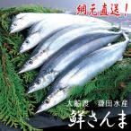 三陸 生サンマを直送 鎌田水産 鮮さんま 120g〜140g 12尾 15163