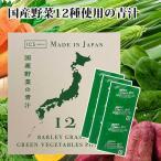 国産青汁のススメ3g×40包入り 12種類の国産野菜[送料無料 MSM]