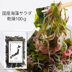 海藻サラダ 国産 乾燥100g 大容量  わかめ 茎わかめ 昆布 ふのり 赤とさか メール便送料無料 MSM