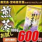 お試し 特上煎茶100g 九州産茶葉のみ使用 お茶 ポイント消化 メール便送料無料 MSM