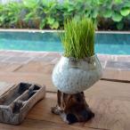 バリ アジアン雑貨 インテリア 花瓶 花器 水槽 鉢 フラワーボウル 睡蓮鉢 メダカ 金魚 ガラス フラワーベース おしゃれ 古木