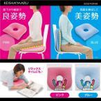 【送料無料】『快適姿勢 けいしゃ丸 【低反発 クッション 】 ピンク / ブルー』