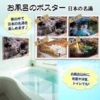 (送料無料)お風呂のポスター 日本の名湯