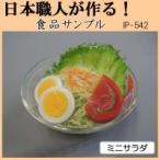 (送料無料)日本職人が作る 食品サンプル ミニサラダ IP-542