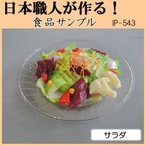 (送料無料)日本職人が作る 食品サンプル サラダ IP-543