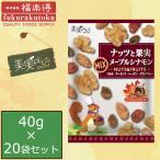 (代引き・同梱不可)(送料無料)福楽得 美実PLUS ナッツと果実 メープルシナモン 40g×20袋セット